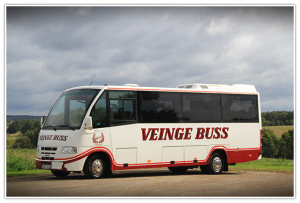 veingebuss3